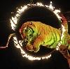 Цирки в Новокузнецке